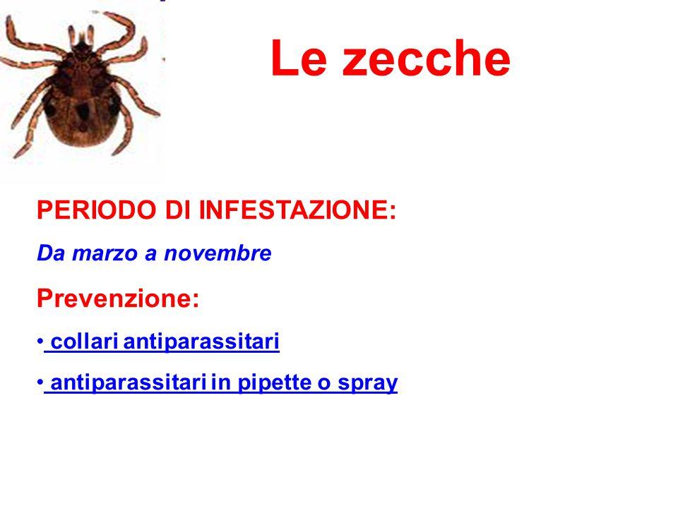 Le zecche PERIODO DI INFESTAZIONE: Prevenzione: Da marzo a novembre