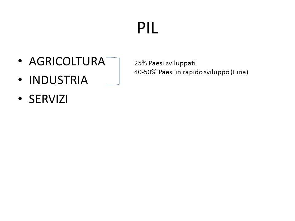 PIL AGRICOLTURA INDUSTRIA SERVIZI 25% Paesi sviluppati