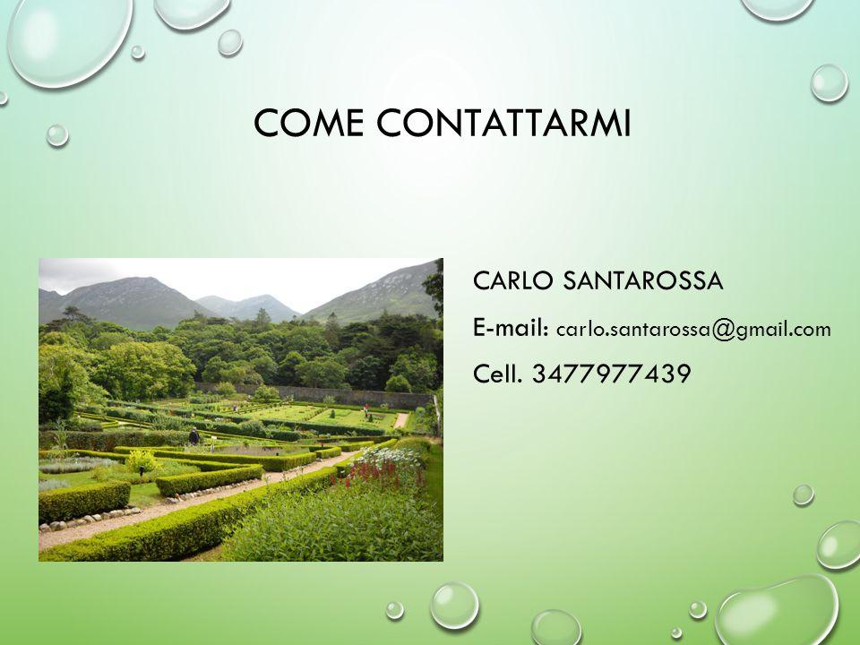 Come contattarmi Carlo Santarossa E-mail: carlo.santarossa@gmail.com