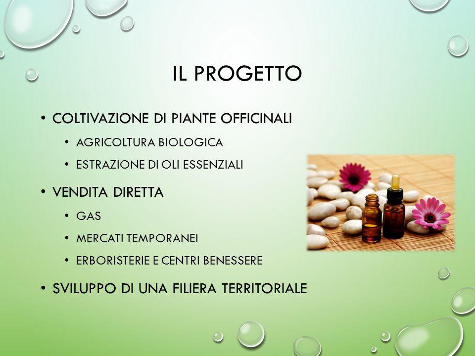 Il progetto Coltivazione di piante officinali Vendita diretta