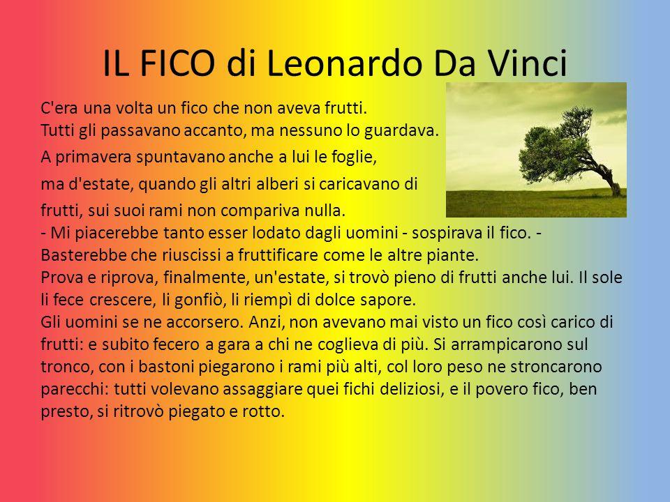 IL FICO di Leonardo Da Vinci