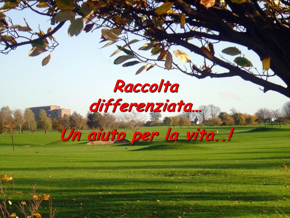 Raccolta differenziata…