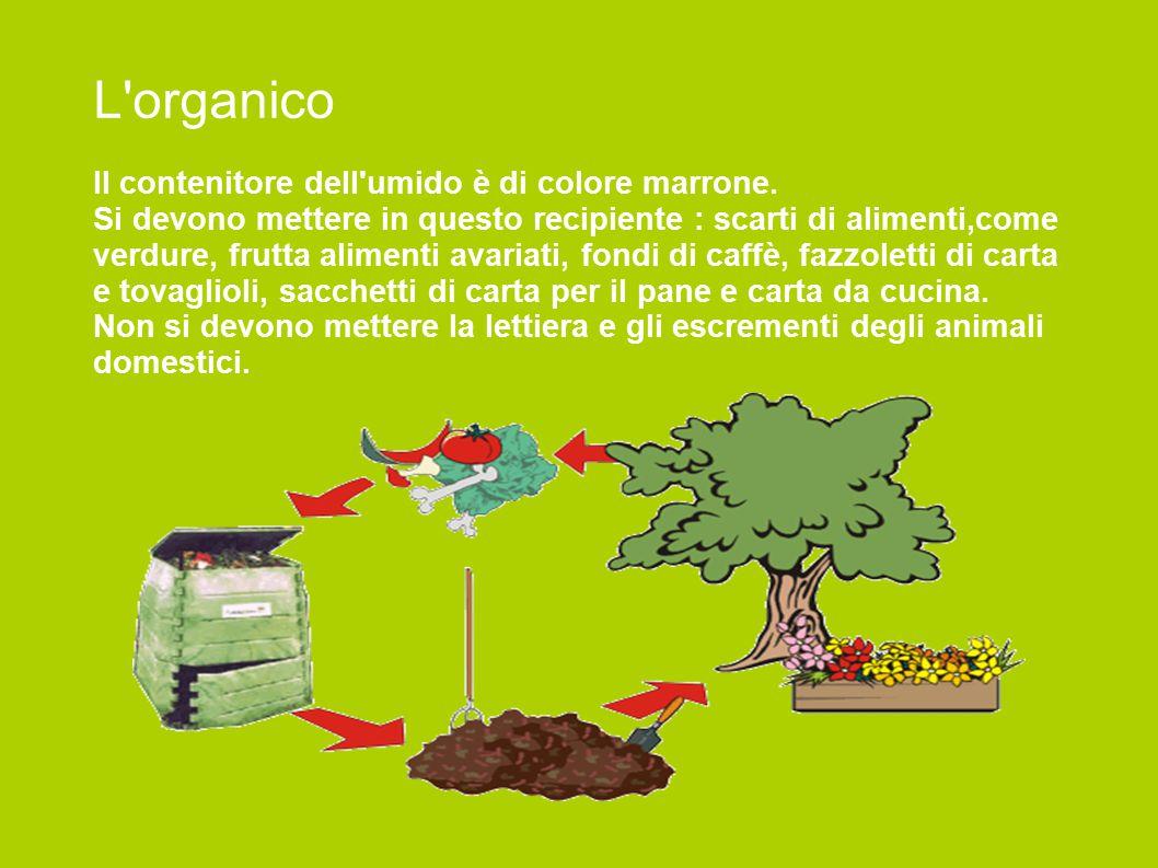 L organico Il contenitore dell umido è di colore marrone.