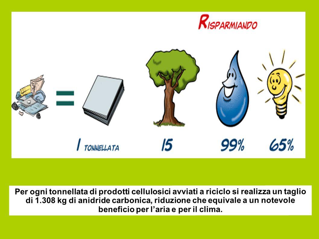 Per ogni tonnellata di prodotti cellulosici avviati a riciclo si realizza un taglio di 1.308 kg di anidride carbonica, riduzione che equivale a un notevole beneficio per l'aria e per il clima.