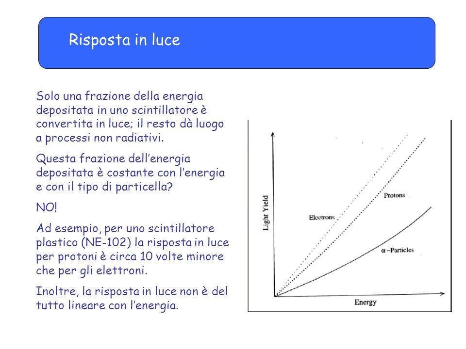 Risposta in luce Solo una frazione della energia depositata in uno scintillatore è convertita in luce; il resto dà luogo a processi non radiativi.