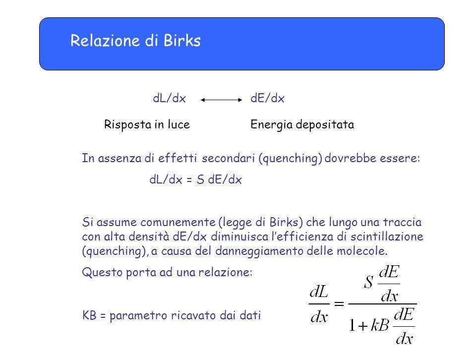 Relazione di Birks dL/dx dE/dx Risposta in luce Energia depositata