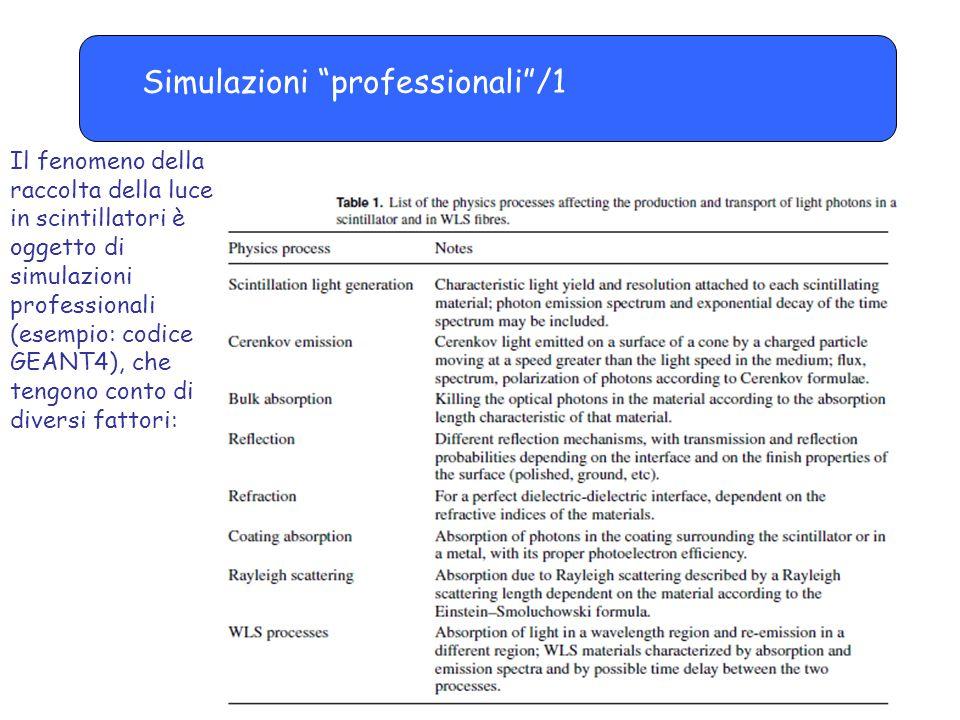 Simulazioni professionali /1