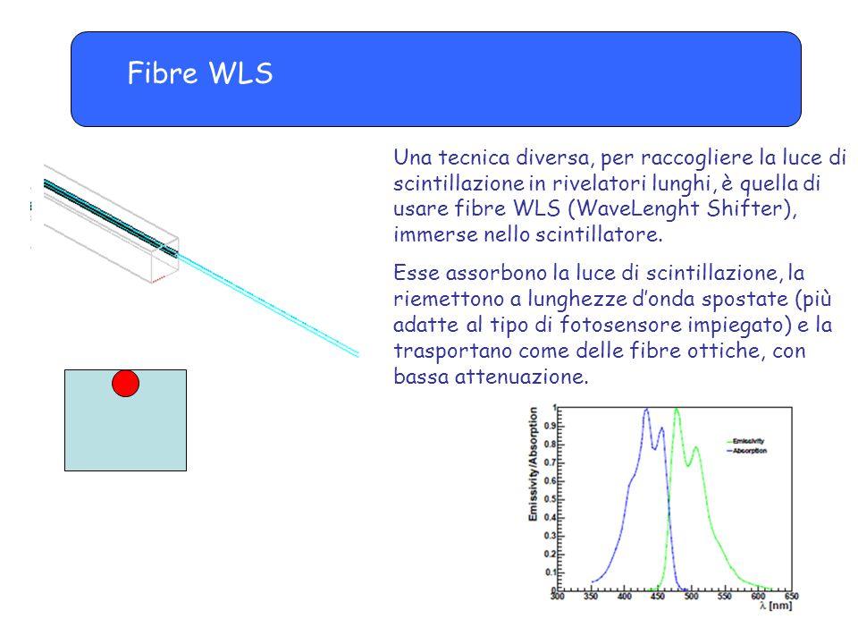 Fibre WLS