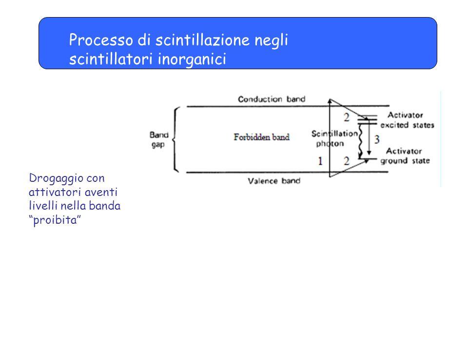 Processo di scintillazione negli scintillatori inorganici