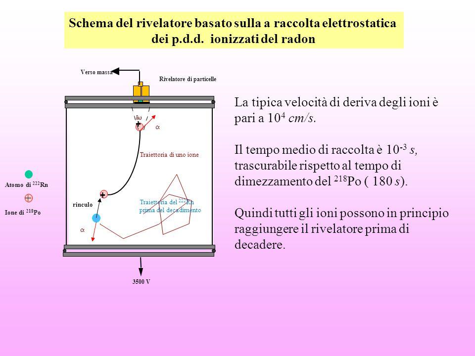 Schema del rivelatore basato sulla a raccolta elettrostatica