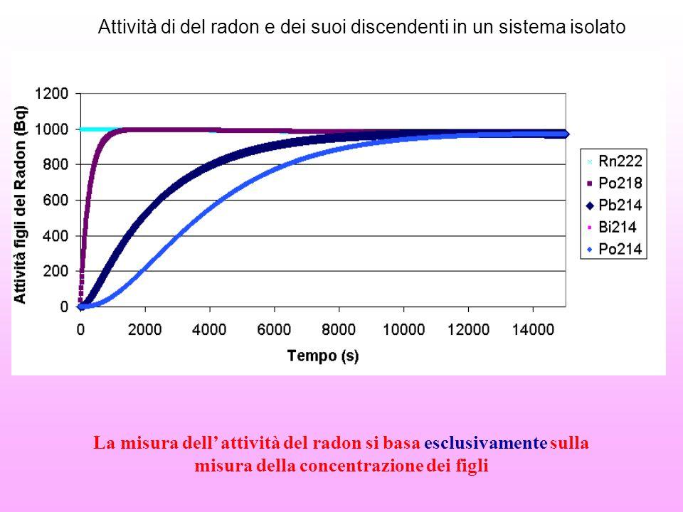 Attività di del radon e dei suoi discendenti in un sistema isolato