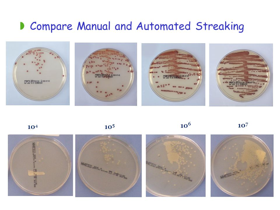 Compare Manual and Automated Streaking