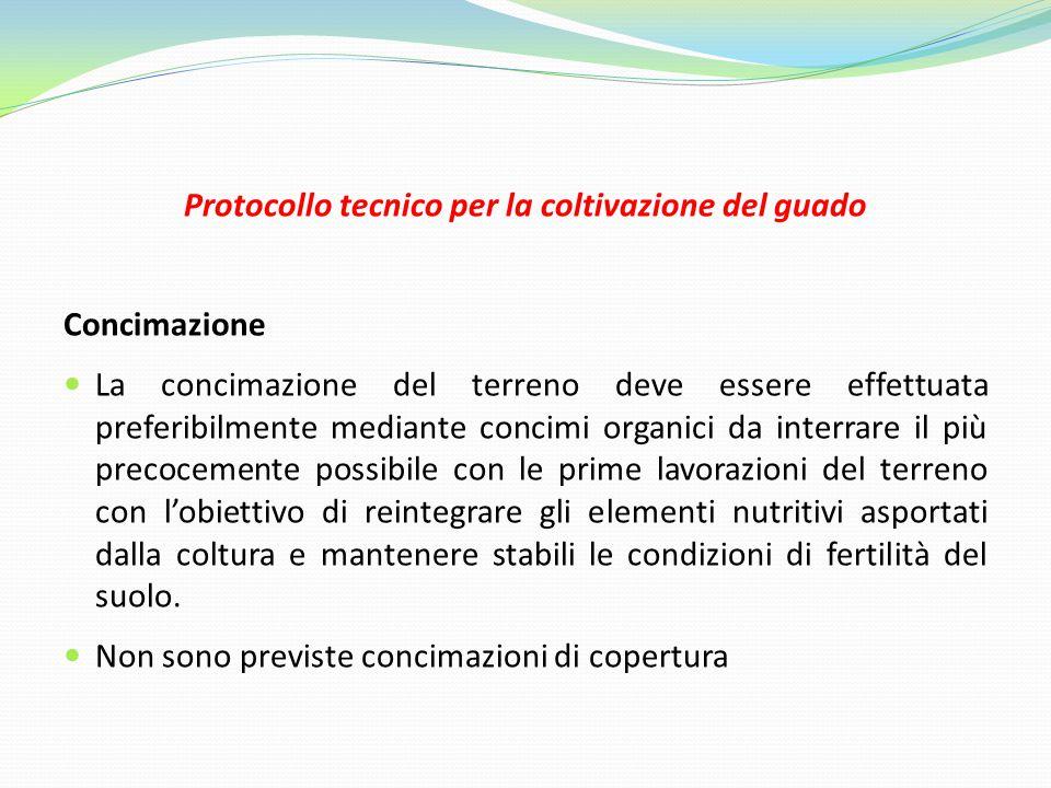 Protocollo tecnico per la coltivazione del guado