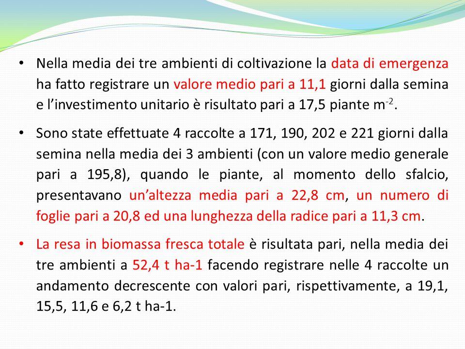 Nella media dei tre ambienti di coltivazione la data di emergenza ha fatto registrare un valore medio pari a 11,1 giorni dalla semina e l'investimento unitario è risultato pari a 17,5 piante m-2.