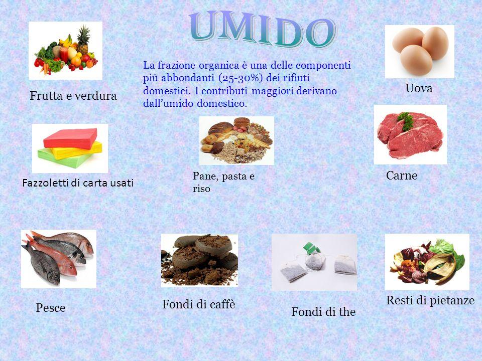 Umido Uova Frutta e verdura Carne Fazzoletti di carta usati