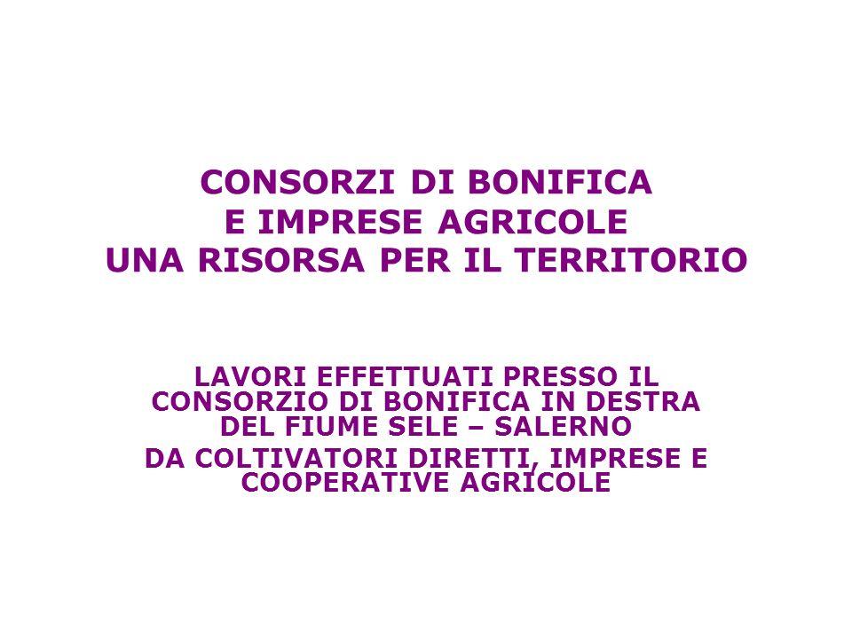 CONSORZI DI BONIFICA E IMPRESE AGRICOLE UNA RISORSA PER IL TERRITORIO