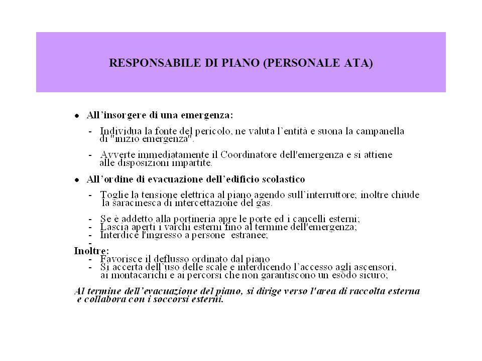 RESPONSABILE DI PIANO (PERSONALE ATA)