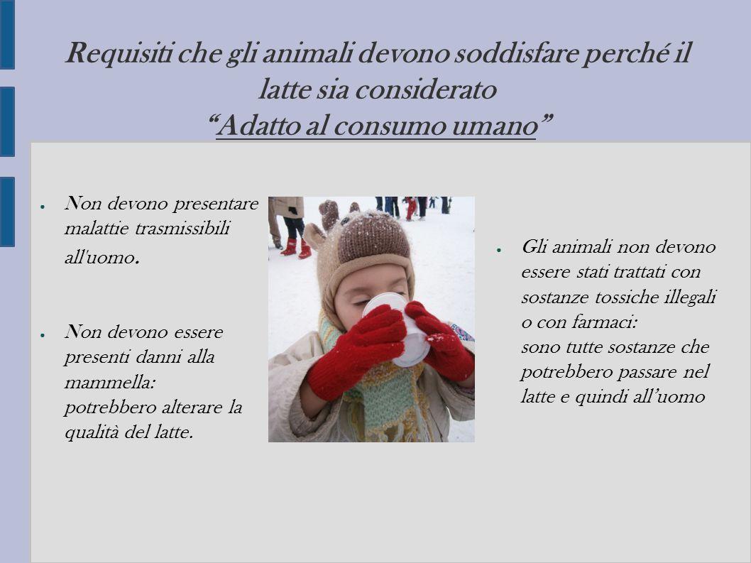 Requisiti che gli animali devono soddisfare perché il latte sia considerato Adatto al consumo umano