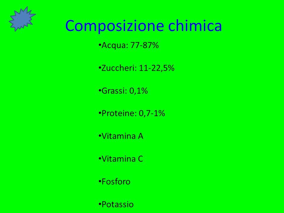 Composizione chimica Acqua: 77-87% Zuccheri: 11-22,5% Grassi: 0,1%