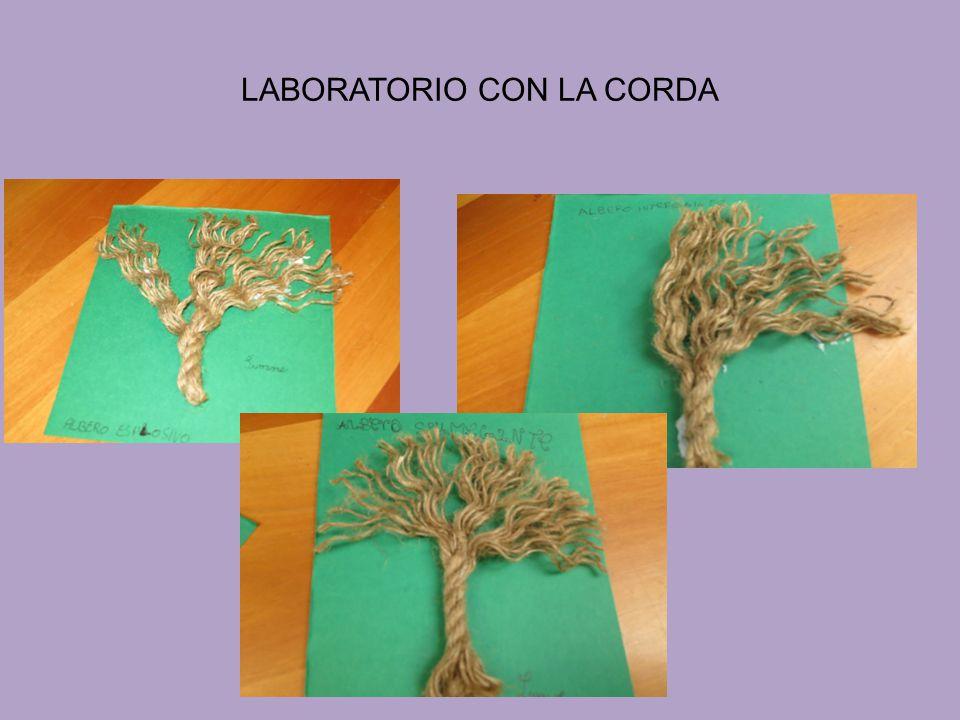 LABORATORIO CON LA CORDA