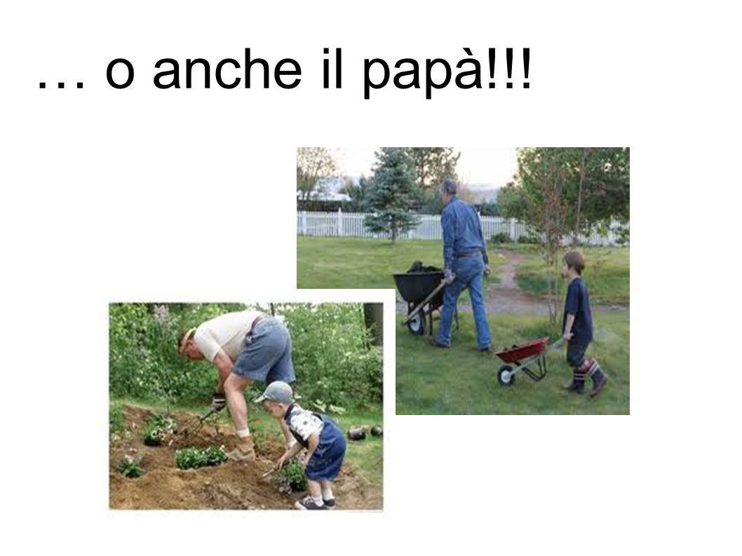 … o anche il papà!!!