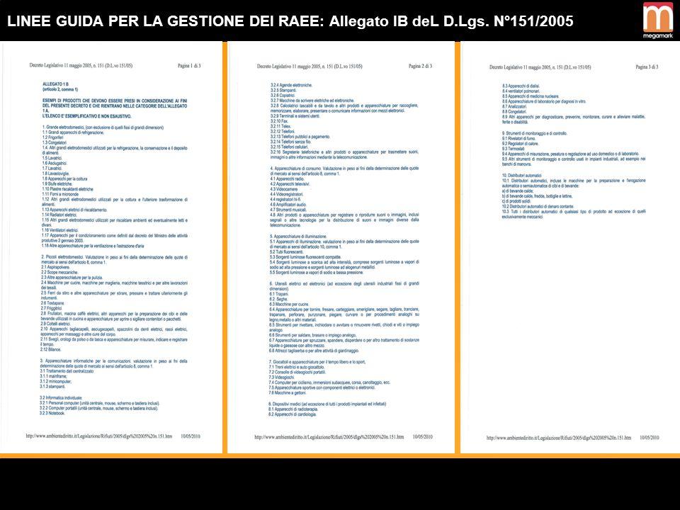 LINEE GUIDA PER LA GESTIONE DEI RAEE: Allegato IB deL D. Lgs