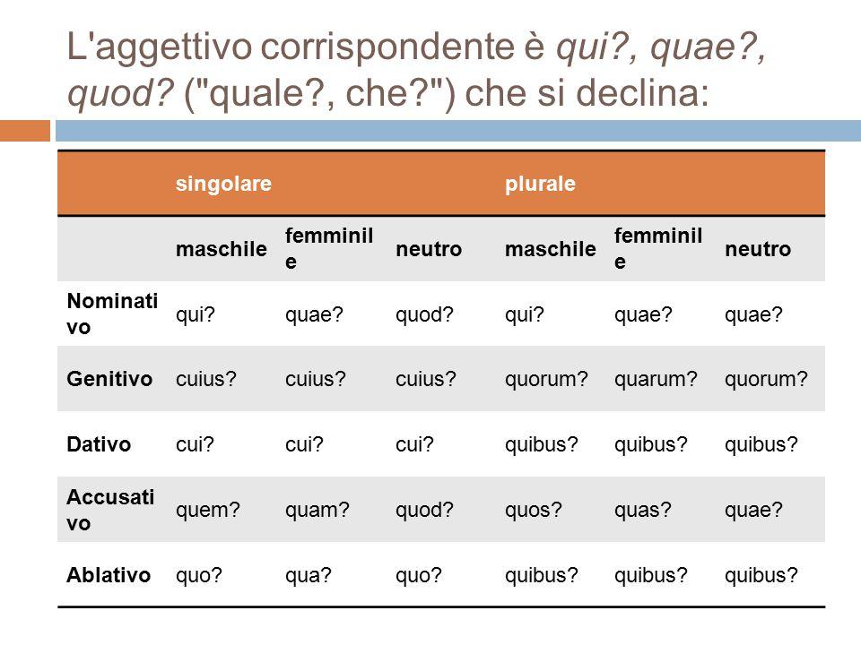 L aggettivo corrispondente è qui. , quae. , quod. ( quale. , che