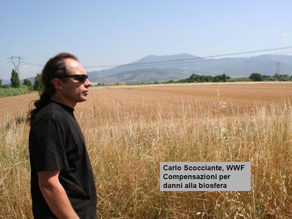 Carlo Scocciante, WWF Compensazioni per danni alla biosfera