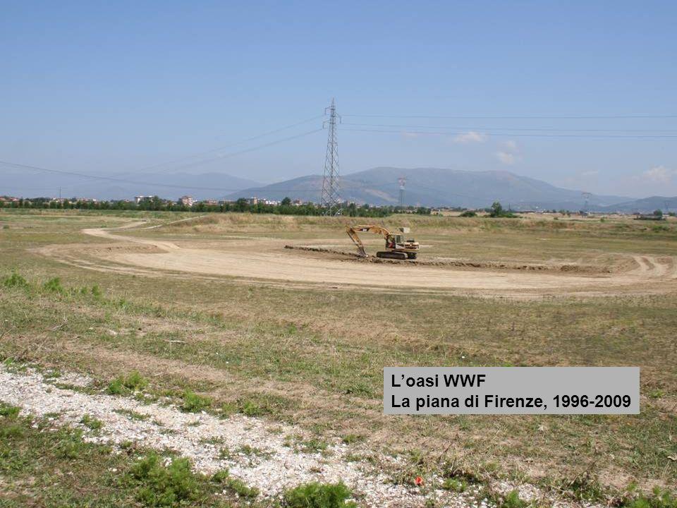 L'oasi WWF La piana di Firenze, 1996-2009
