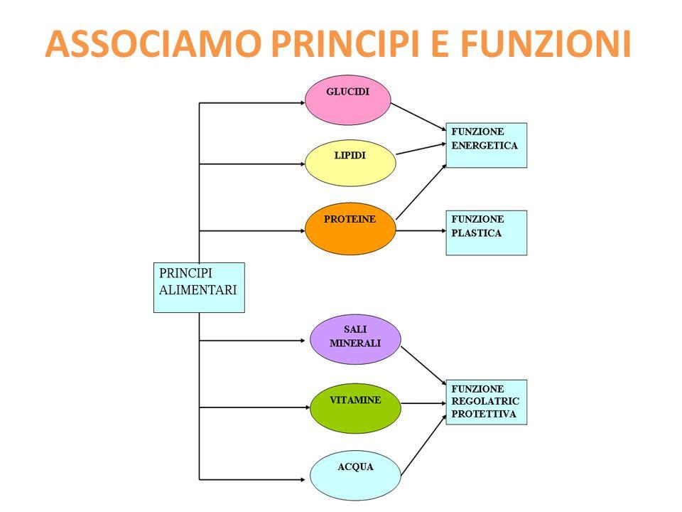 ASSOCIAMO PRINCIPI E FUNZIONI