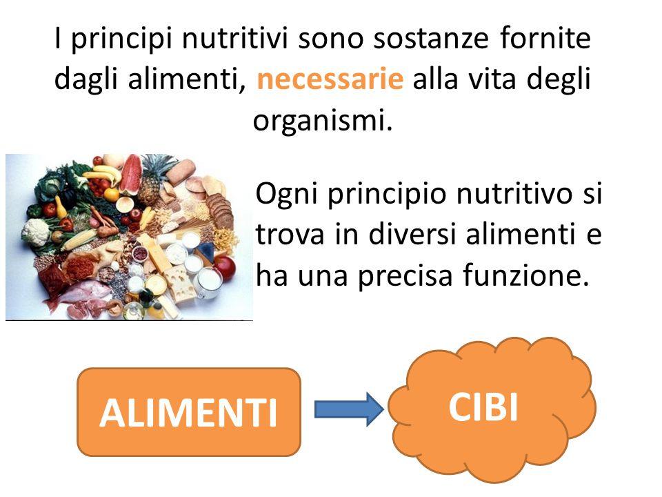 I principi nutritivi sono sostanze fornite dagli alimenti, necessarie alla vita degli organismi.