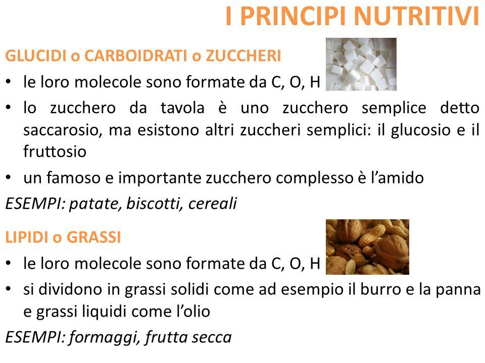 I PRINCIPI NUTRITIVI GLUCIDI o CARBOIDRATI o ZUCCHERI