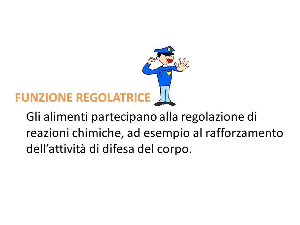 FUNZIONE REGOLATRICE Gli alimenti partecipano alla regolazione di reazioni chimiche, ad esempio al rafforzamento dell'attività di difesa del corpo.