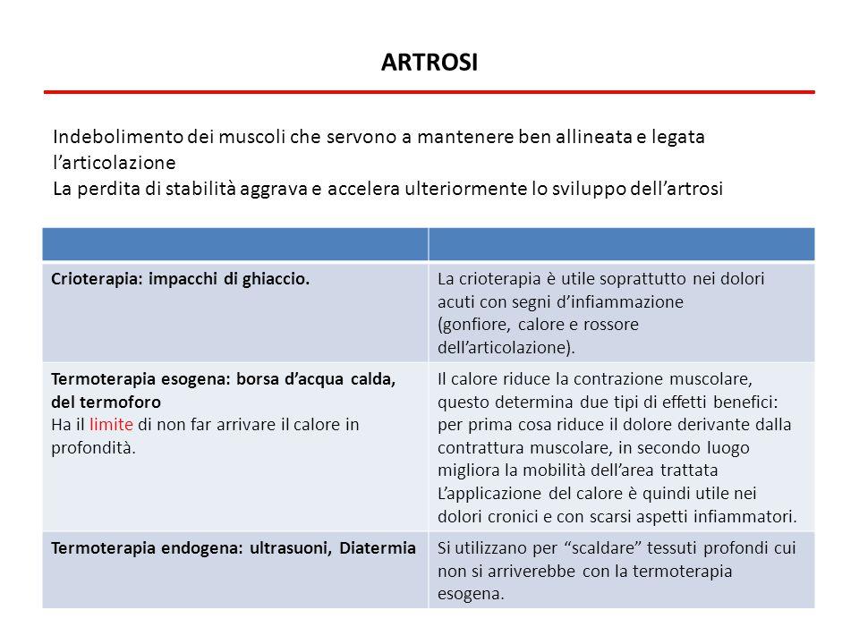 artrosi Indebolimento dei muscoli che servono a mantenere ben allineata e legata l'articolazione.