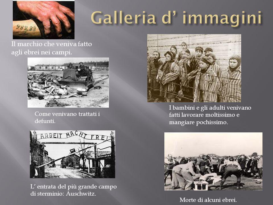Galleria d' immagini Il marchio che veniva fatto agli ebrei nei campi.