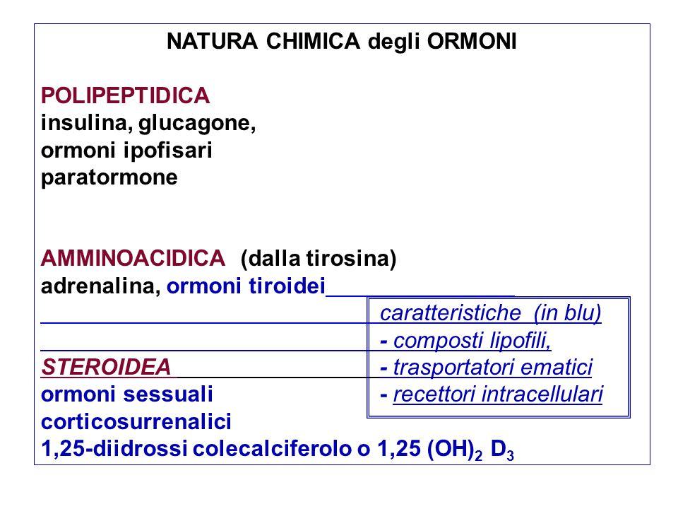 NATURA CHIMICA degli ORMONI
