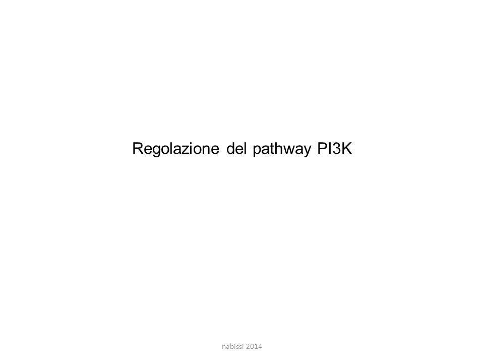 Regolazione del pathway PI3K