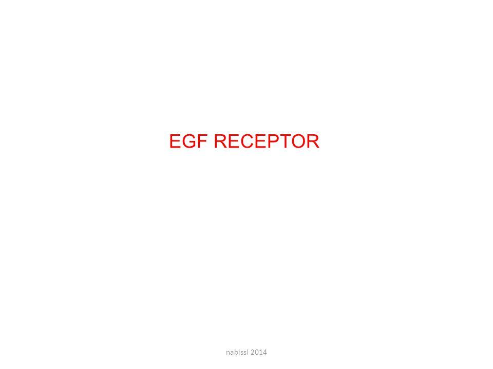 EGF RECEPTOR nabissi 2014