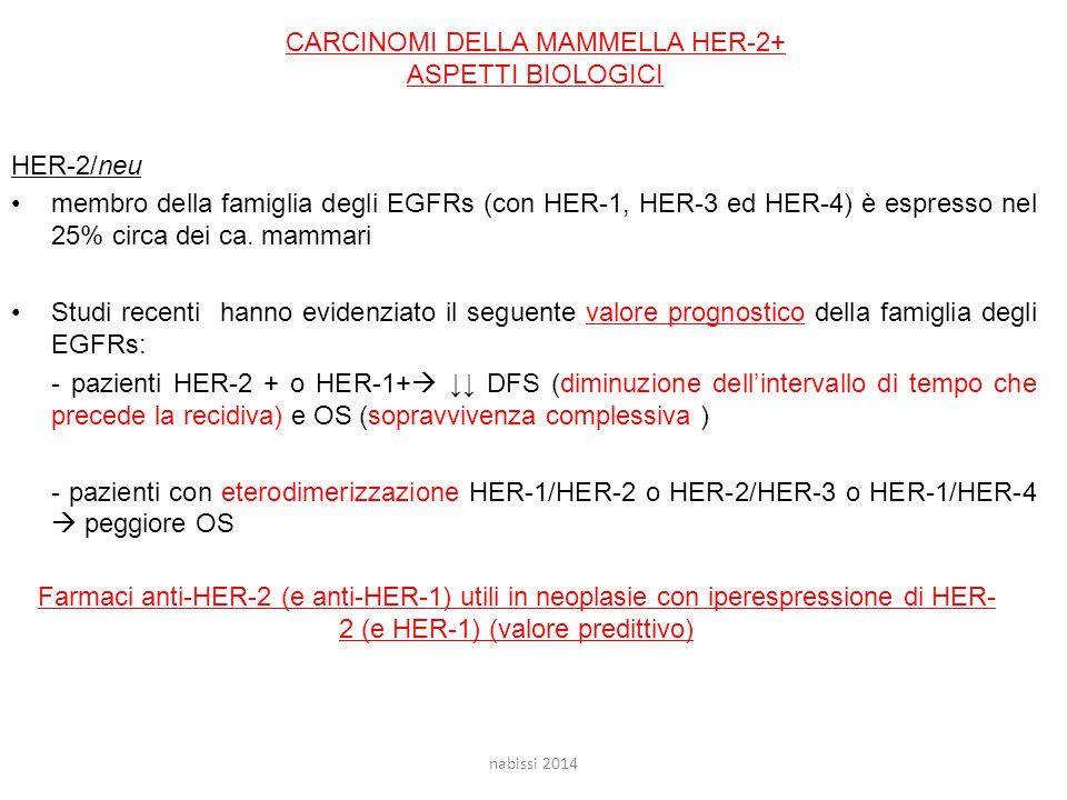 CARCINOMI DELLA MAMMELLA HER-2+ ASPETTI BIOLOGICI