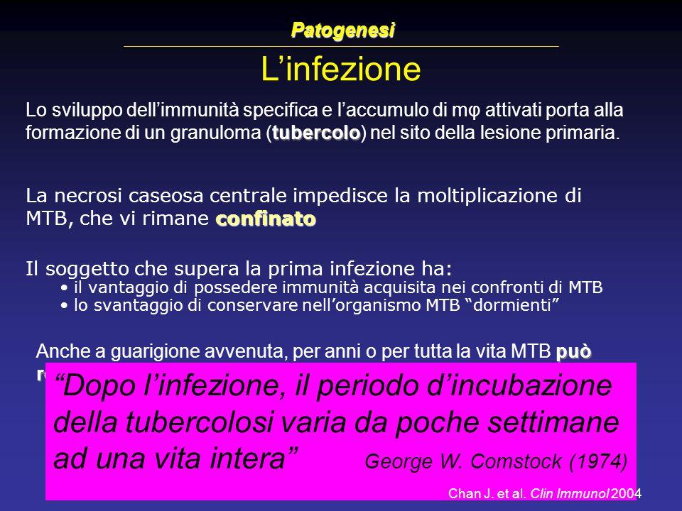 Patogenesi L'infezione.