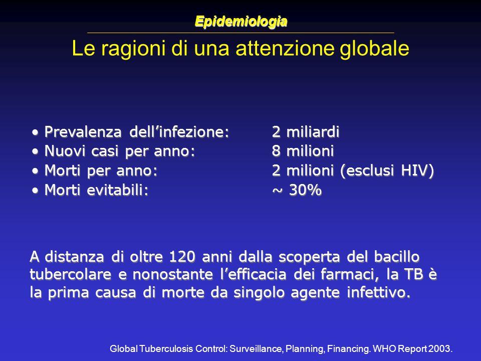 Le ragioni di una attenzione globale