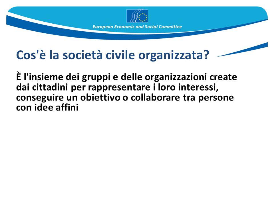 Cos è la società civile organizzata
