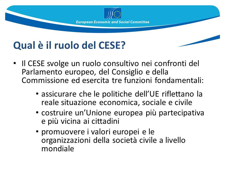 Qual è il ruolo del CESE