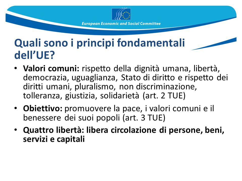 Quali sono i principi fondamentali dell'UE