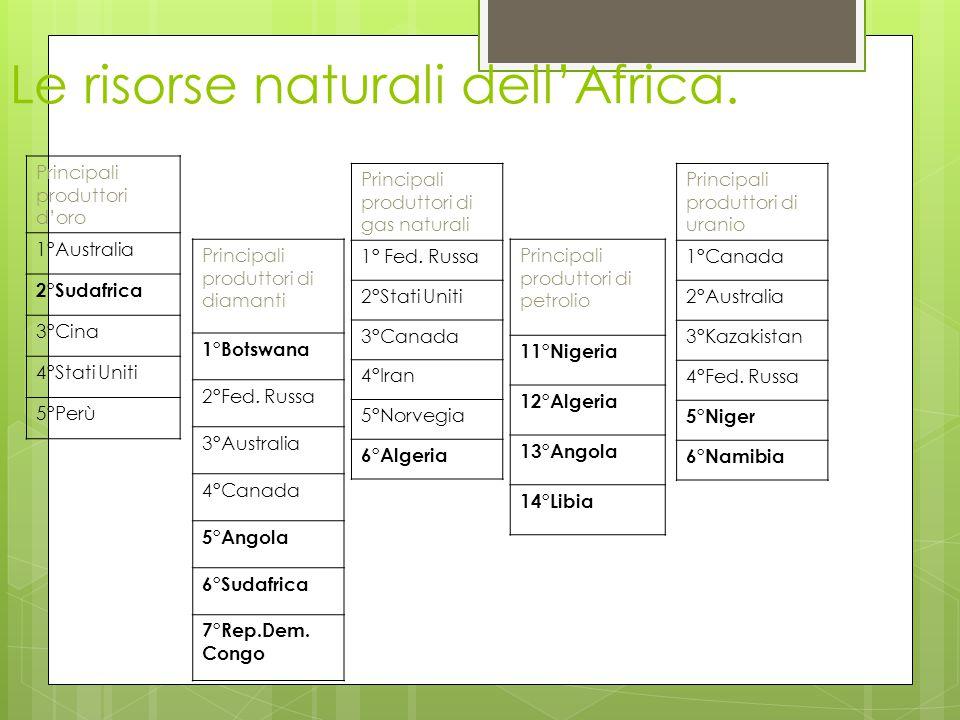 Le risorse naturali dell'Africa.