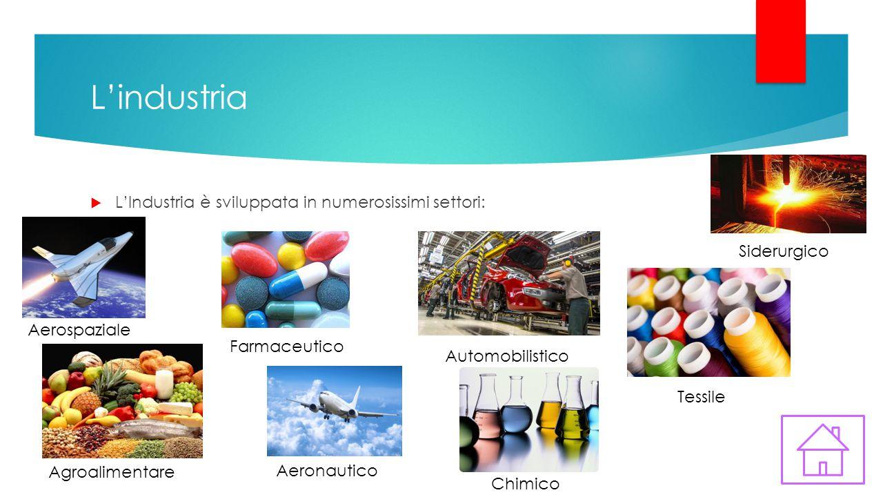 L'industria L'Industria è sviluppata in numerosissimi settori: