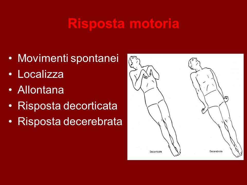 Risposta motoria Movimenti spontanei Localizza Allontana