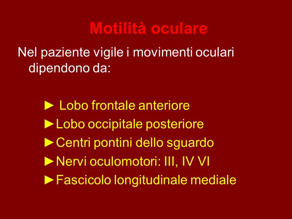 Motilità oculare Nel paziente vigile i movimenti oculari dipendono da: