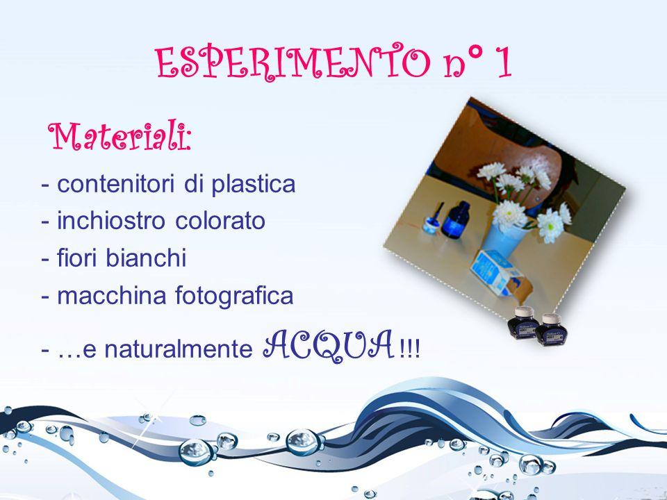 ESPERIMENTO n° 1 Materiali: - contenitori di plastica