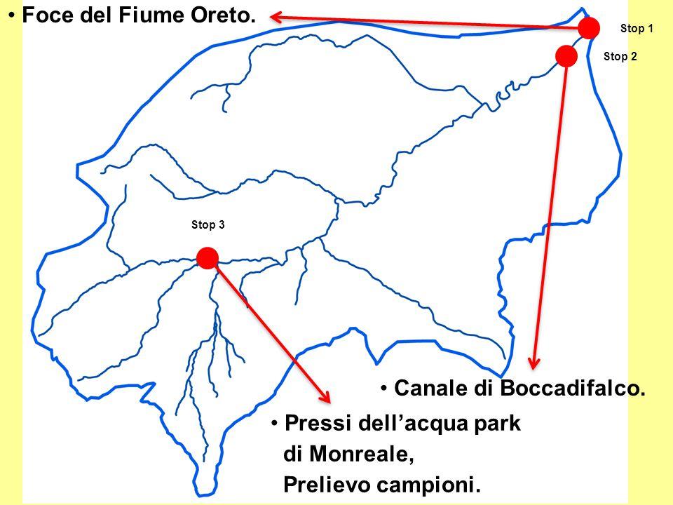 Canale di Boccadifalco.